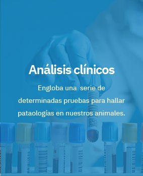 http://anamartin.es/wp-content/uploads/2018/06/ser1-284x349.jpg